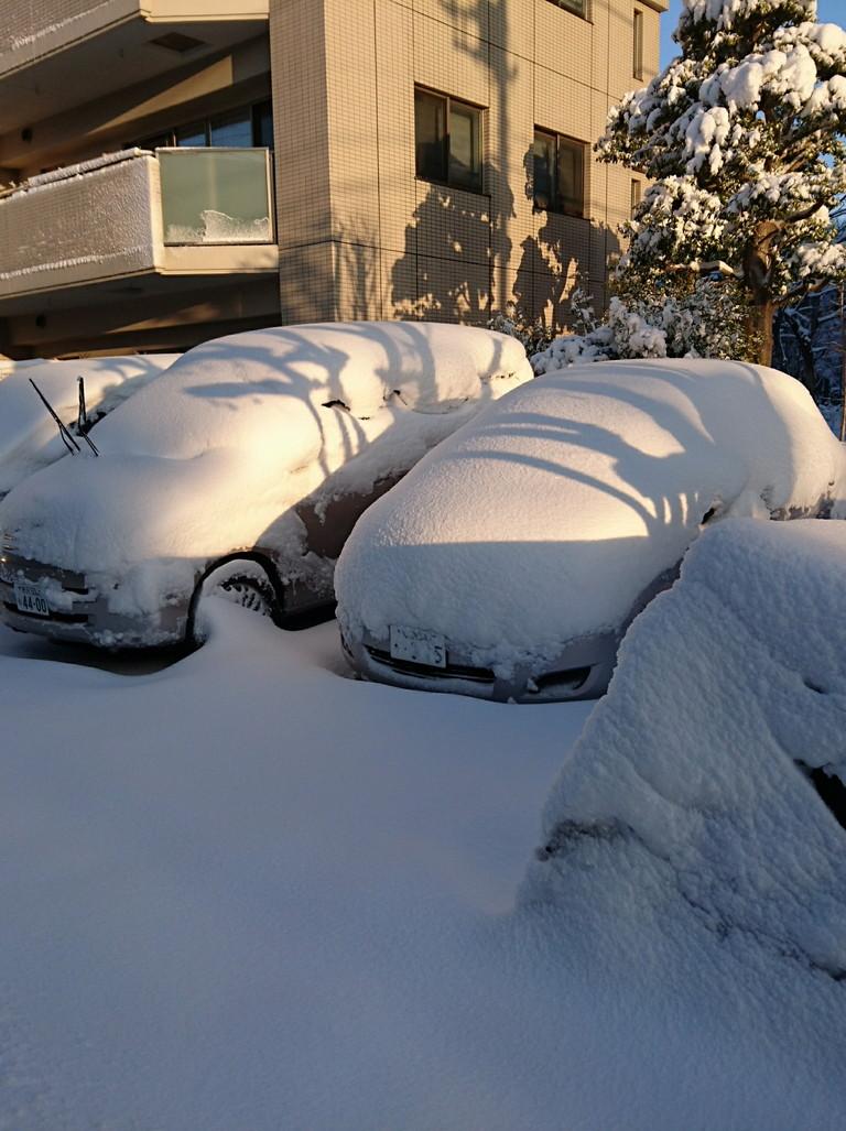 大雪 (2)
